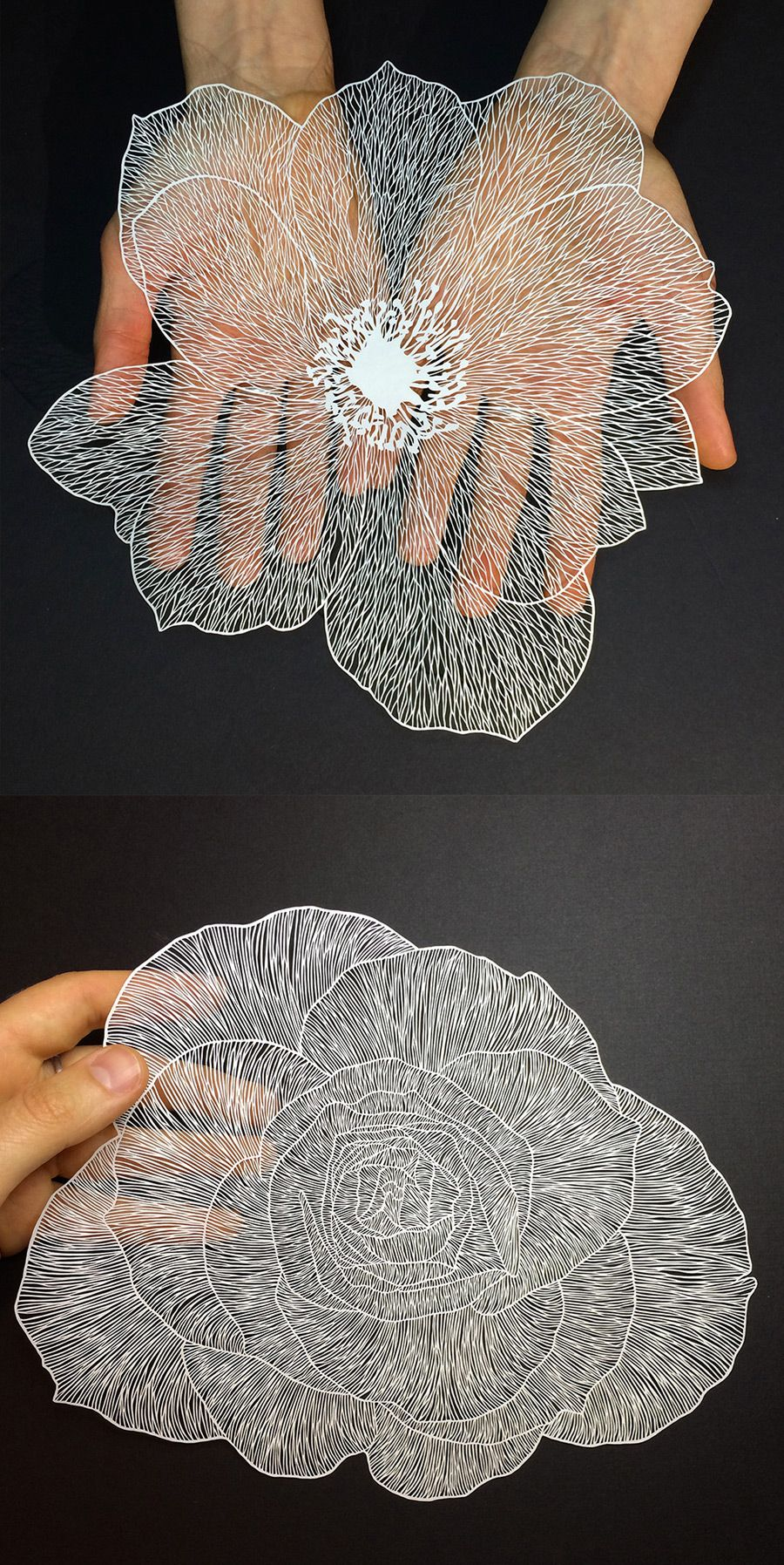 New Delicate Cut Paper Flowers By Maude White Art Pinterest - Intricate hand cut paper art maude white
