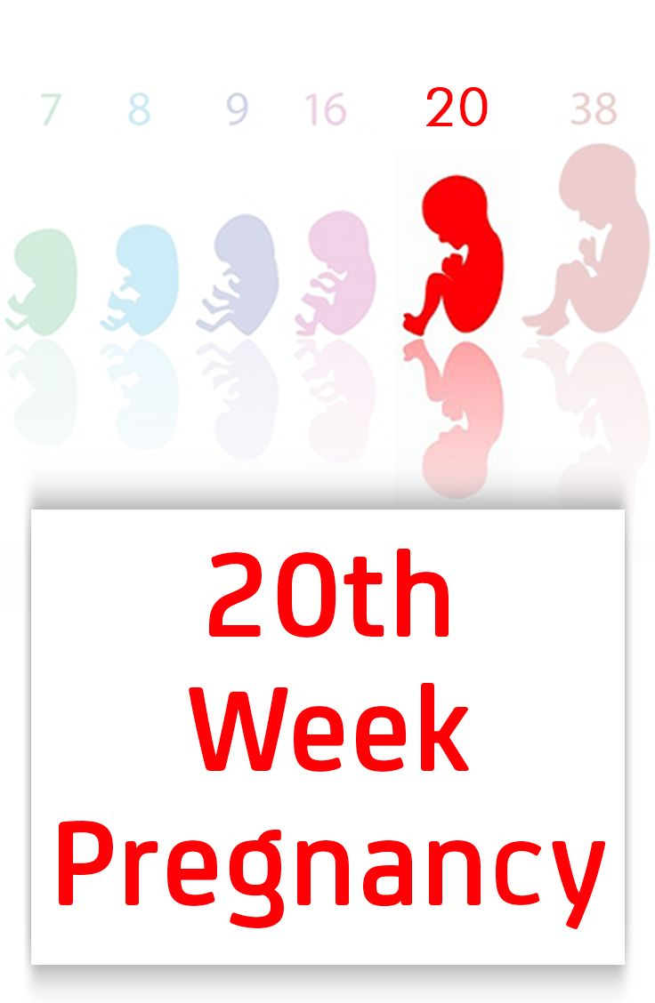20th Week Pregnancy – Symptoms, Baby Development, Tips And Body Changes