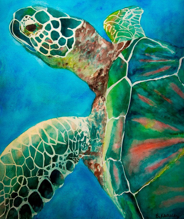 Sea turtle just because i like it pinterest sea for Turtle fish paint