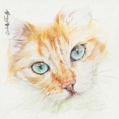 Peinture Aquarelle Chat Roux 16 X 16 Cm Vyshivka Lentami
