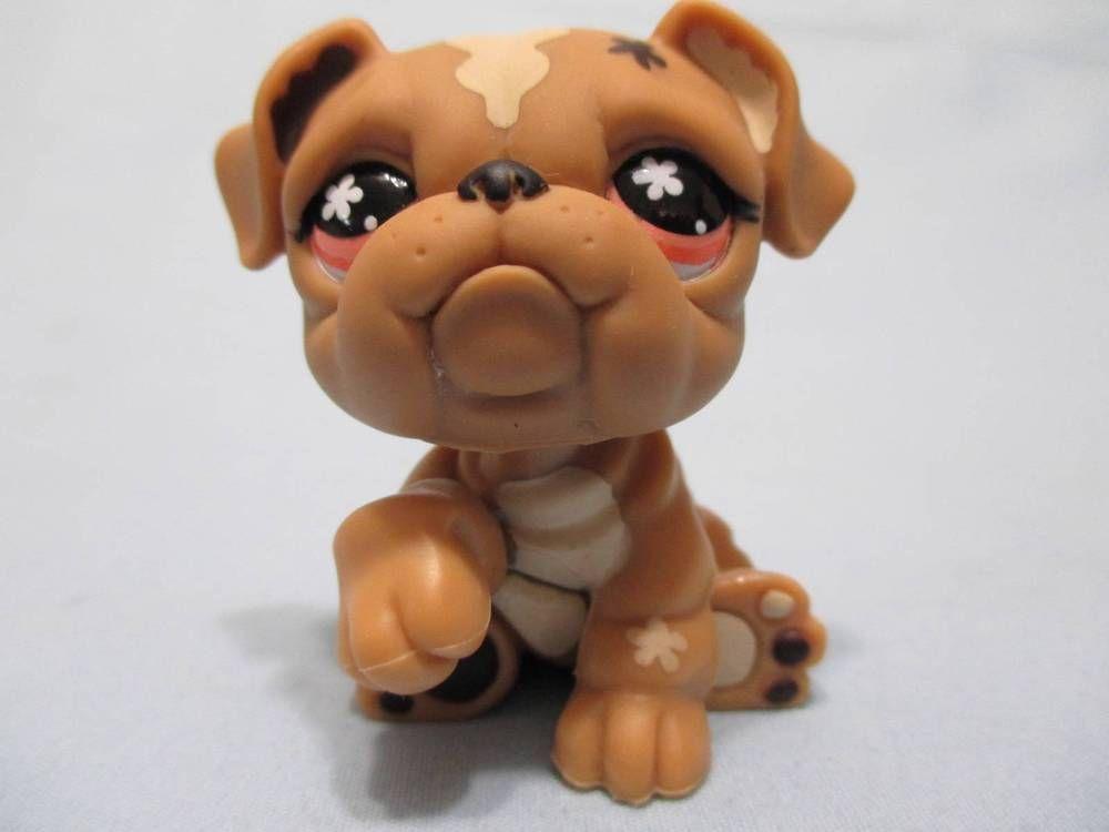 Littlest Pet Shop Tan Bulldog Puppy Dog 607 Orange Eyes Paw Up