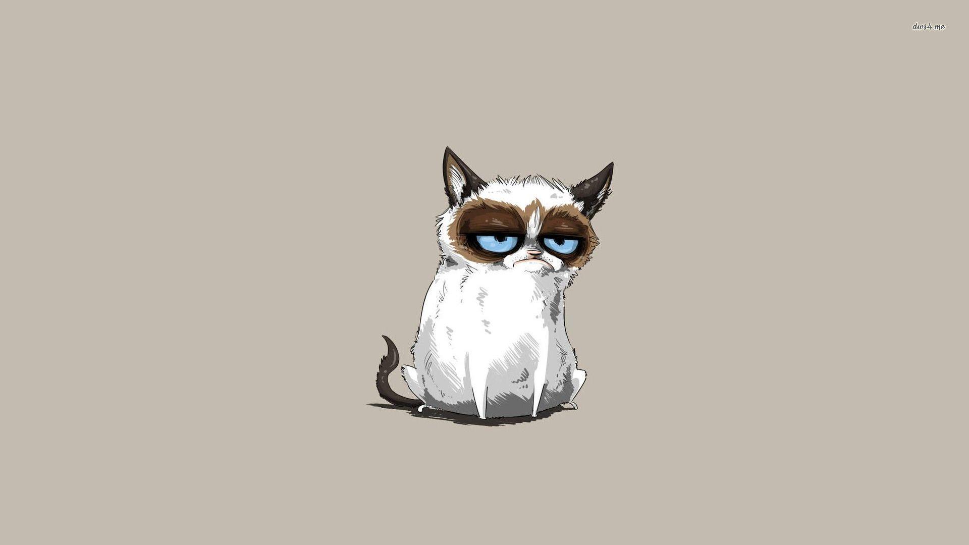 Grumpy Cat Wallpaper Background with HD Desktop 1920x1080 px 56.30 KB | Phone Wallpaper in 2019 ...