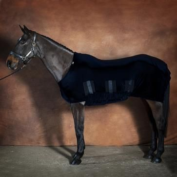 Shiny Show Stretch Lycra Horse Rug Black From Snuggy Hoods Ltd