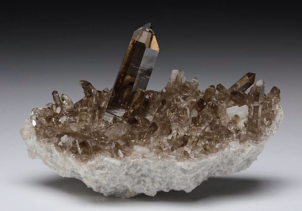 Smoky Quartz Locality Grimsel Area Hasli Valley Bern Switzerland Europe Dimensions 10 0 6 0 4 8 Cm Photo Copyright Cryst Minerals Gems And Minerals Crystals