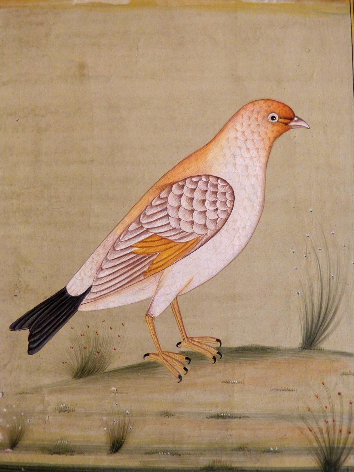 Antique for sale persian dove picture miniature water