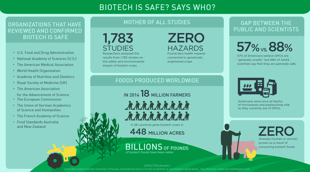 Biotech Foods are Safe. Says Who? [INFOGRAPHIC