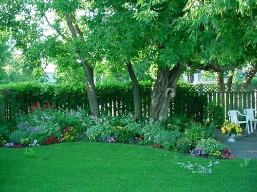 Shade gardens on pinterest shade plants ferns and for Perennial garden design