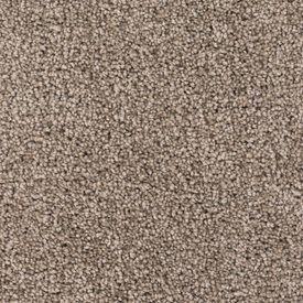 Color 7520 Penthouse Style 510 Sable Georgia Carpet Industries Carpet Samples Home Depot Carpet Textured Carpet