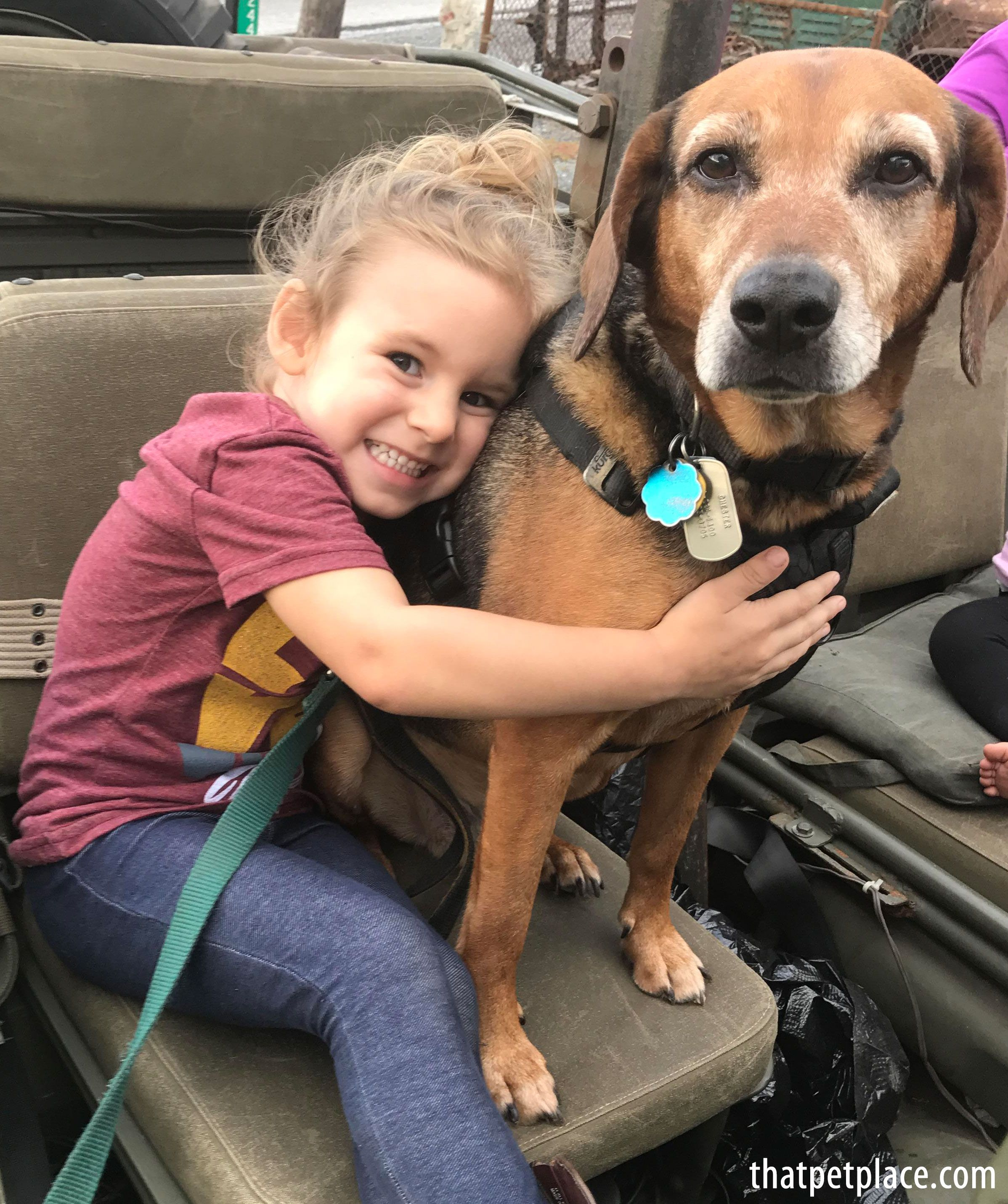 Today Is Hug Your Hound Day Show Us Your Best Hug With Images Online Pet Supplies Discount Pet Supplies Dog Accessories