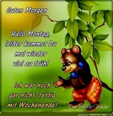 Guten Morgen Sprüche Montag Hallo Good Morning Man