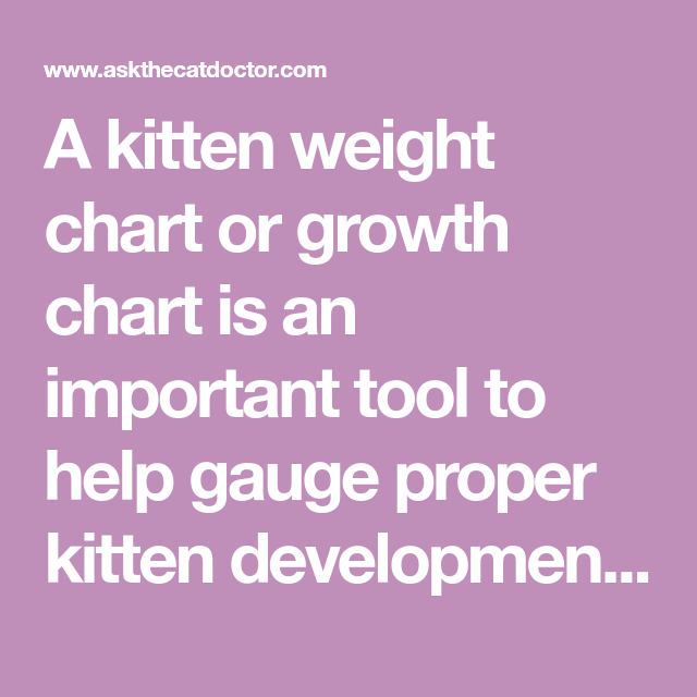 A Kitten Weight Chart Or Growth Chart Is An Important Tool To Help