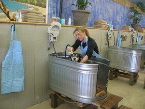 Image Result For Dog Washing Station Diy Doghousekennel Grooming Tubs Tub