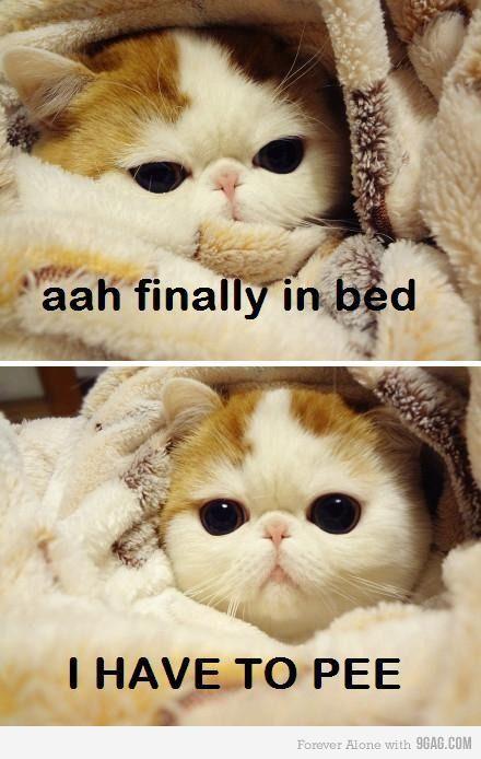 Ahahahahah ma perchèèèè!