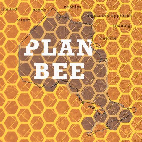 Plan Bee: Ontario moves to restrict neonics