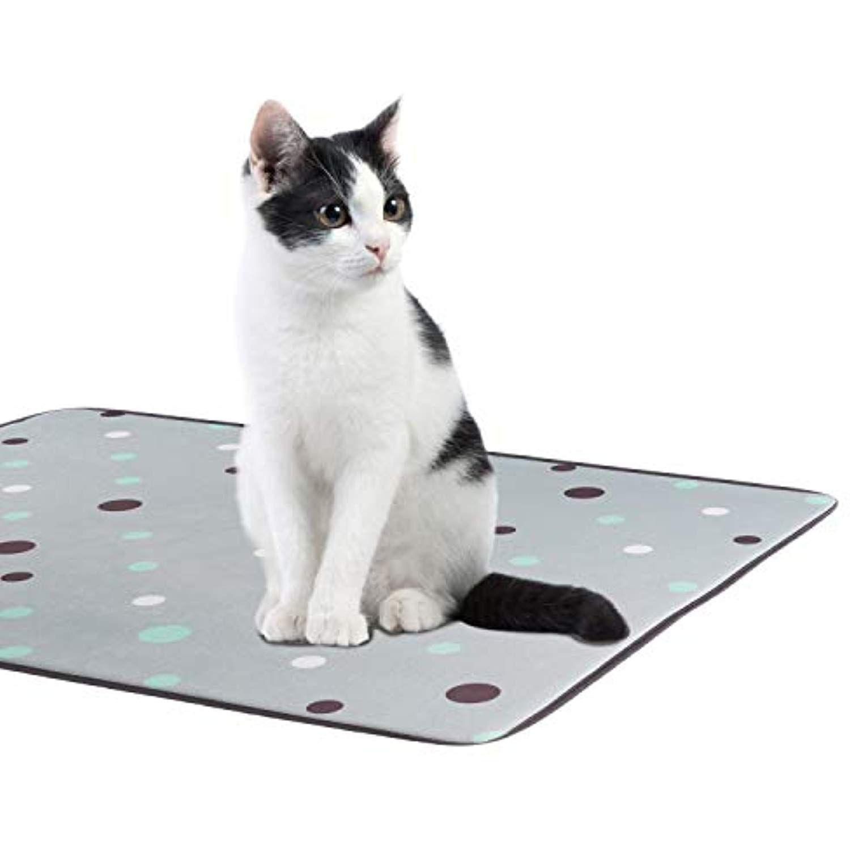 Allisandro Multifunctional Pet Mat Cat Litter Mat Doormat Bowl Bed Mat Absorbent Sponge Dog Cat Door Mat Click On The Image For Additio Cat Litter Mat Pet Mat