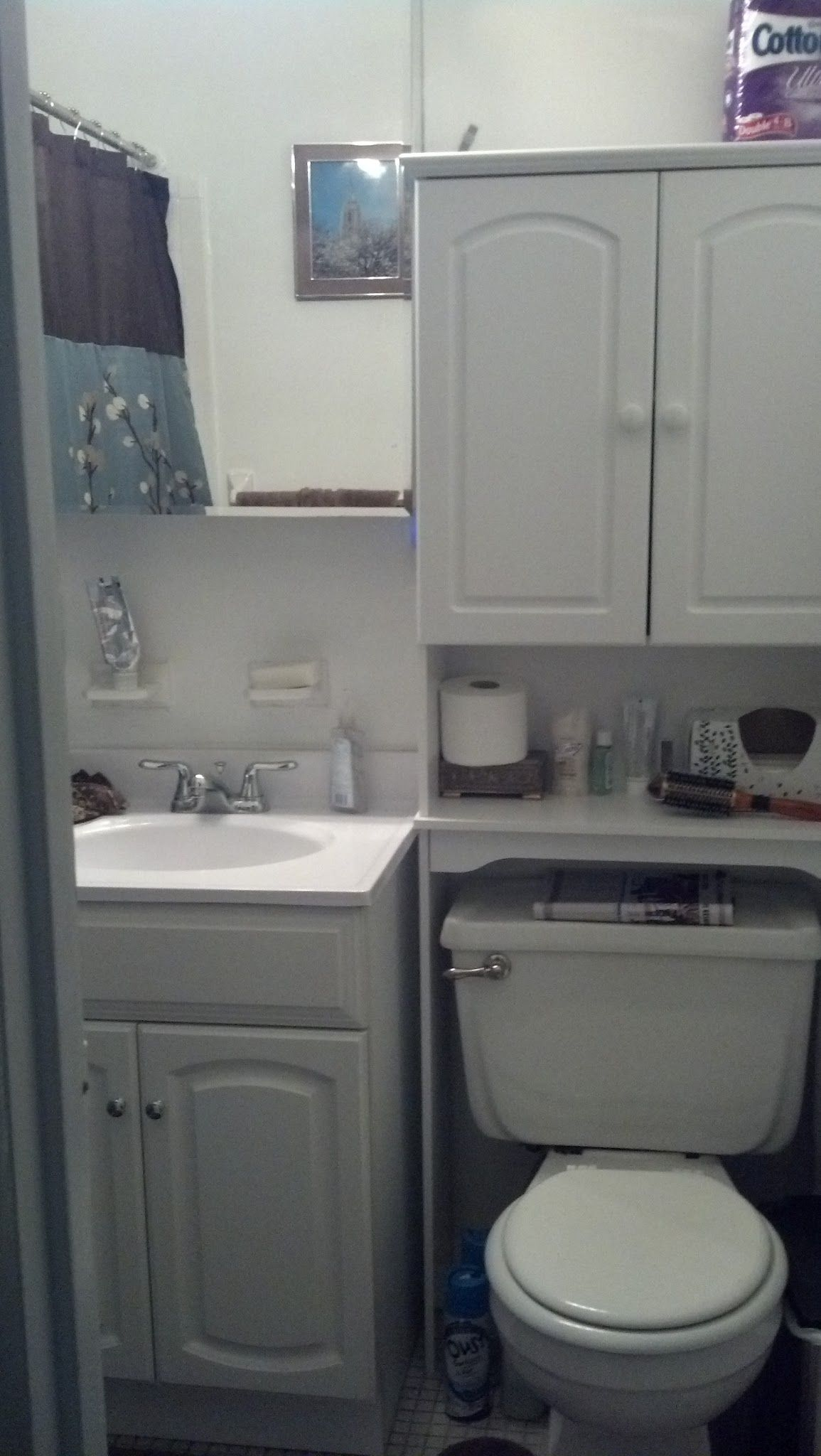 Finally put together the bathroom/over toilet storage cabinet ...