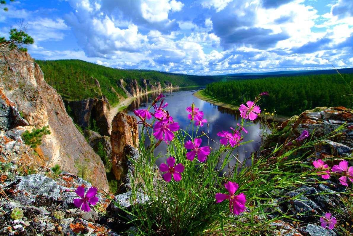 вариант якутская природа фото картинки появления папиллом