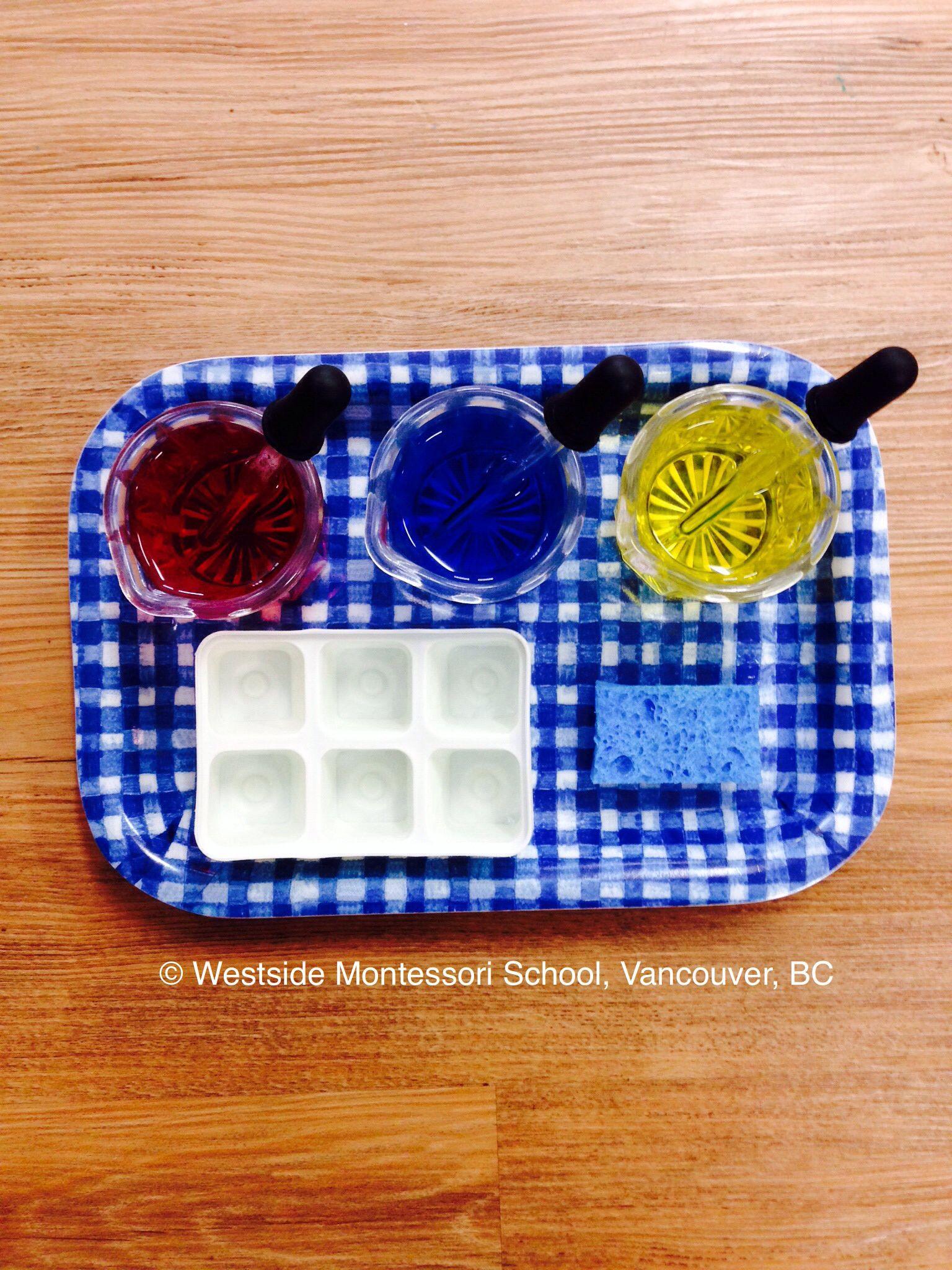 Montessori Practical Life Activity