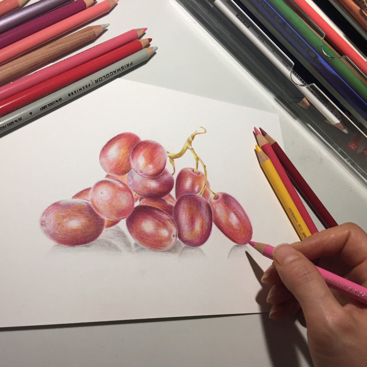 Suayaart Shared A New Photo On Etsy Grape Drawing Pencil Drawings Color Pencil Drawing