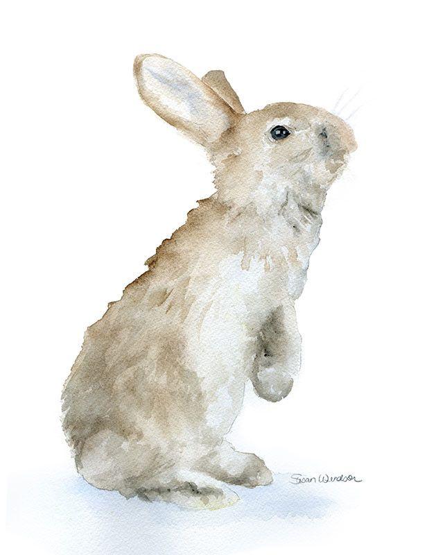 Tan Bunny Rabbit Watercolor Animaux D Aquarelle Lapin Art Et
