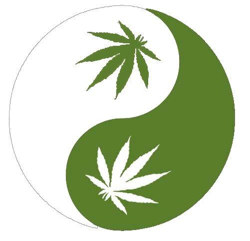 ying yang peace love harmony pinterest cannabis rh pinterest com Yin Yang Quotes Yin and Yang Theory