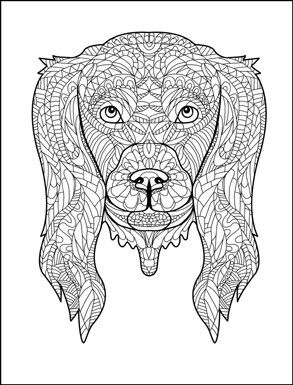 Animals Coloring Book For Adults By Amanda Neel