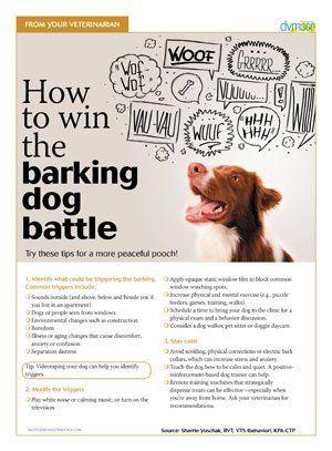 Client Handout Win The Barking Dog Battle Dvm360 Com Best Dog Training Dog Training Barking Dog Training