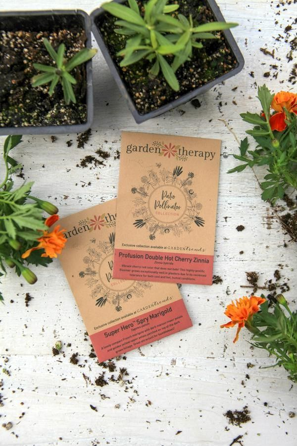 Attract Butterflies Bees And Hummingbirds With A Small 400 x 300