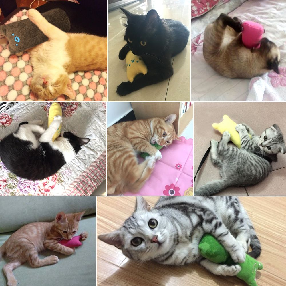 Funny Plush Cat Toy Pet Kitten Chewing Toy Teeth Grinding Catnip Toys Claws Thumb Bite Cat Mi In 2020 Pet Kitten Kitten Toys Cat Toys