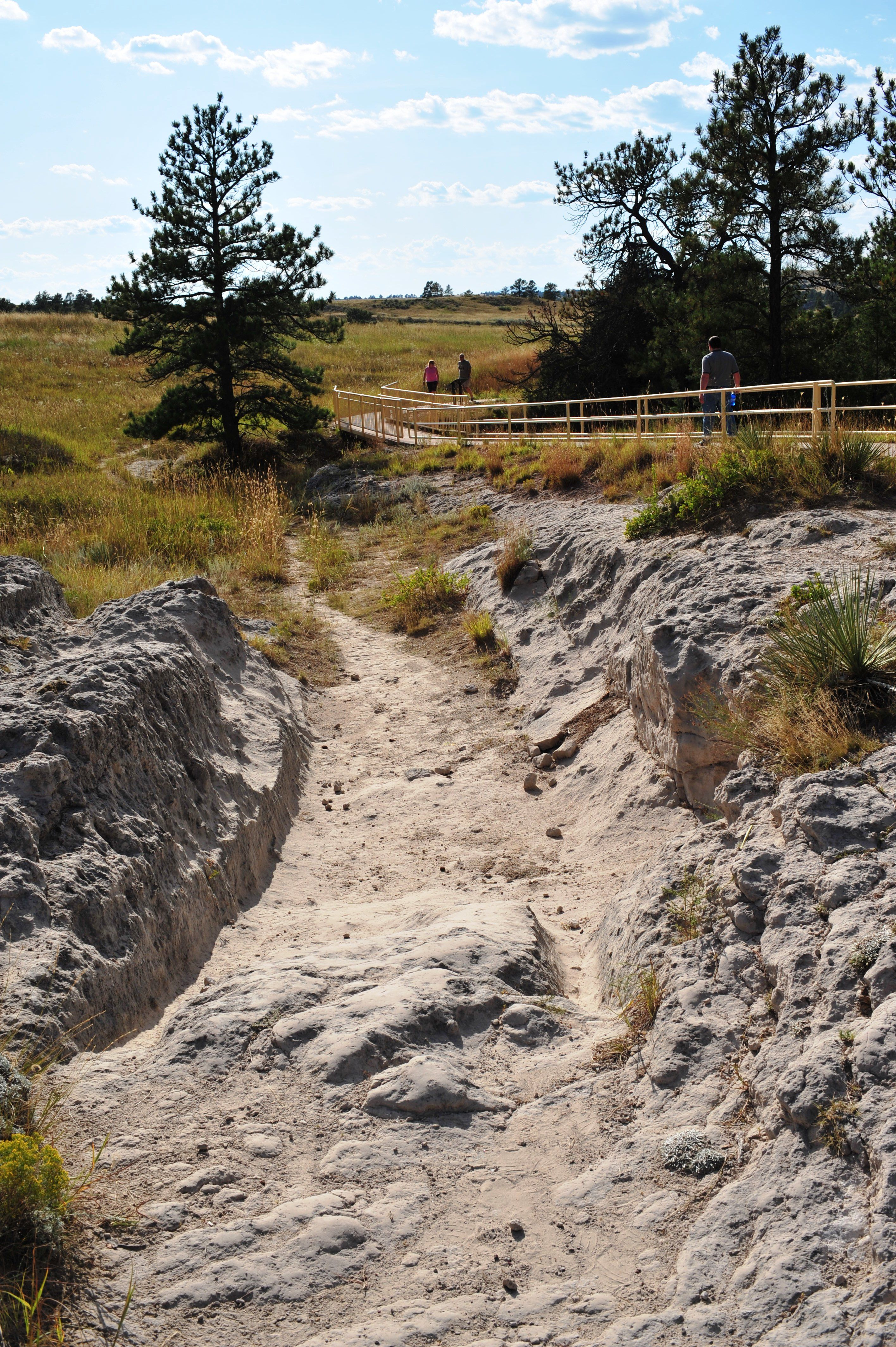 Wagon wheel ruts still on the Oregon Trail in Wyoming....I want to drive the Oregon Trail one day!