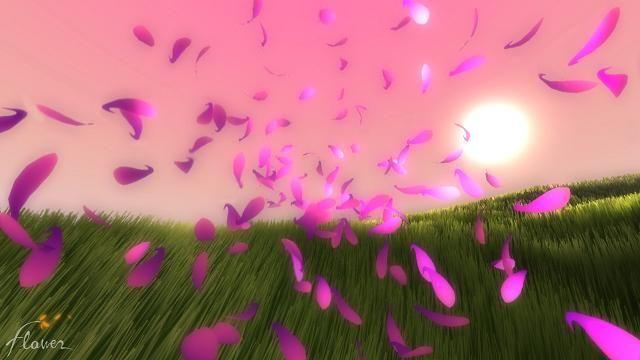 Image%20result%20for%20wind%20flow%20flower%20%20pinterest