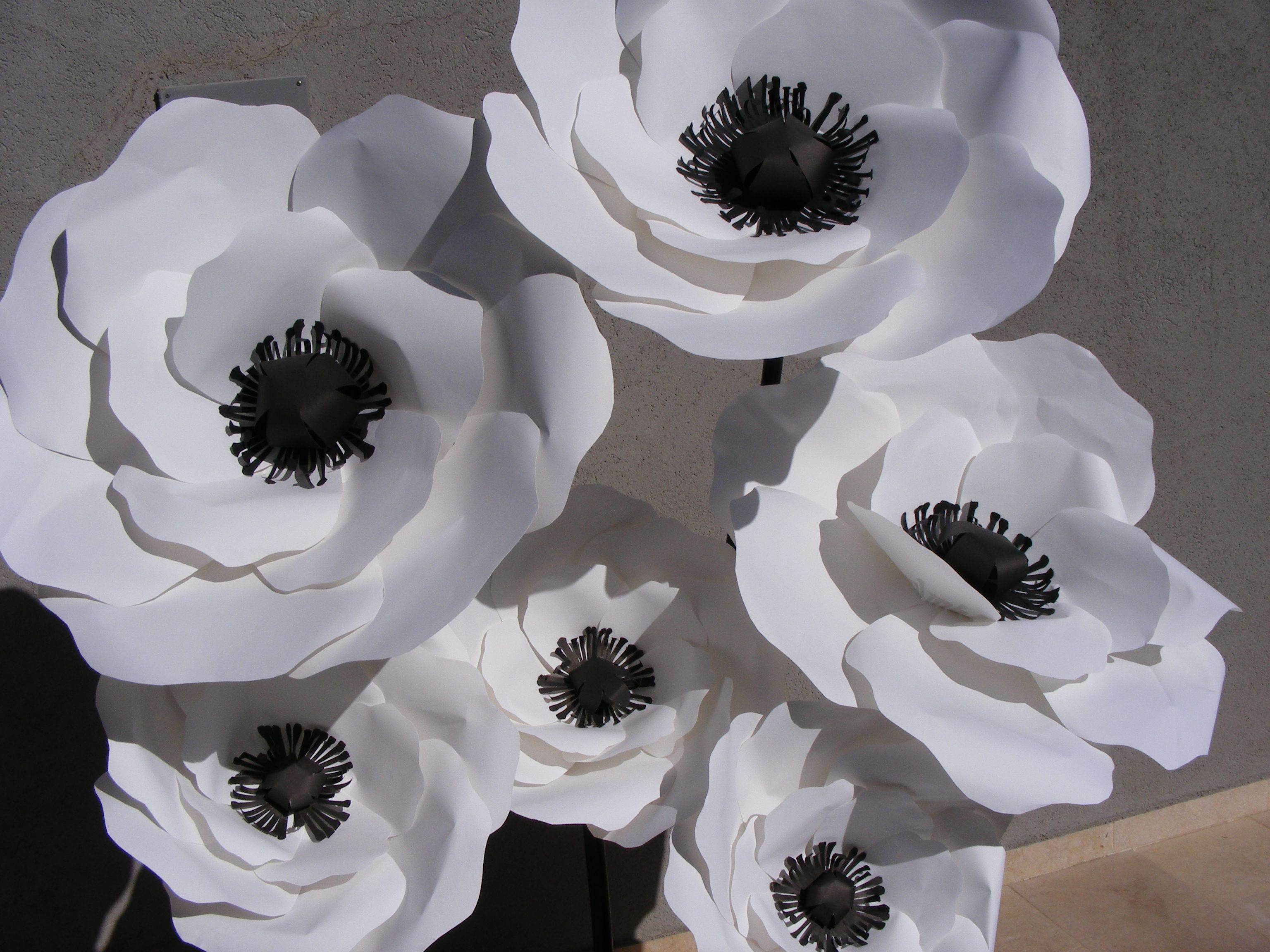 Diy Paper White Anemones These Paper Flower Anemones Are Perfect