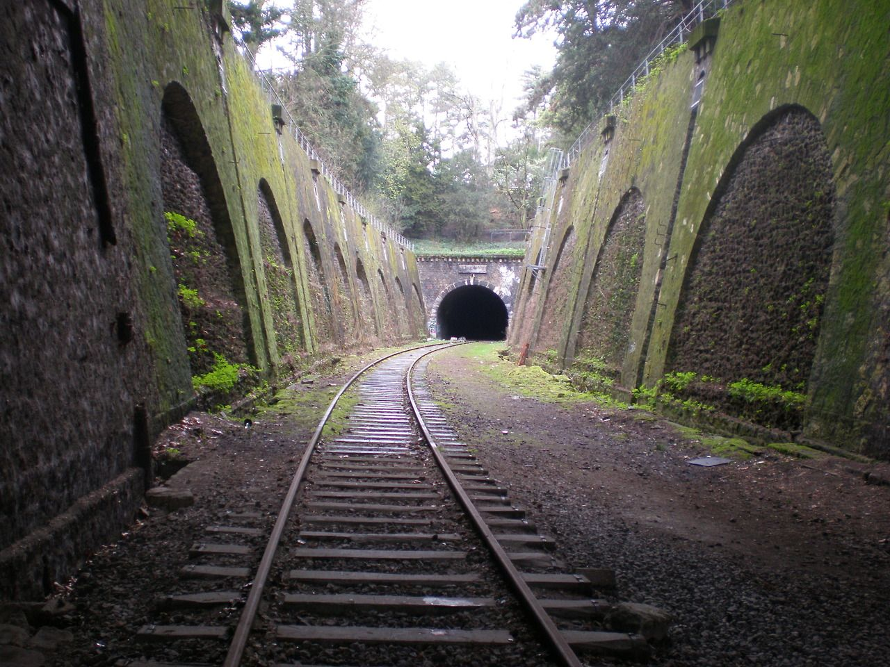 The Petite Ceinture is an abandoned, circular railroad track