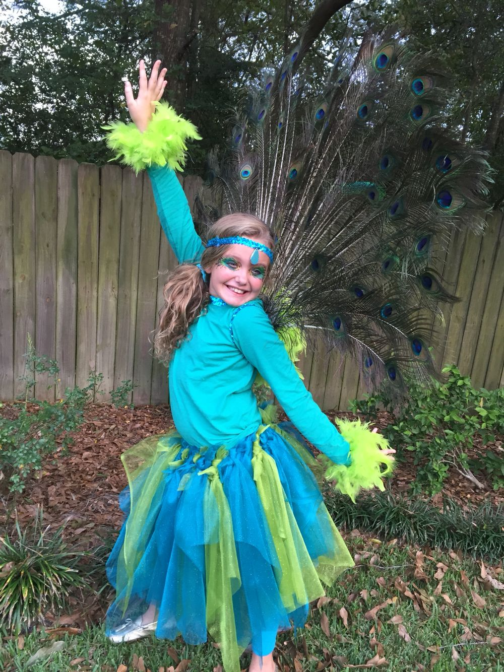 """Peacock costume diy...my daughter loved this and it was easy to make! Hot glued elastic sequins and feather boa to t-shirt, made tulle tutu, built strap-on """"tail"""" with feathers, boa, and cardboard base!!"""