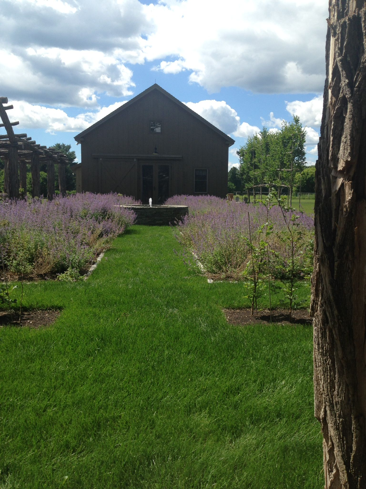 View of the art barn from the butterfly garden Butterfly