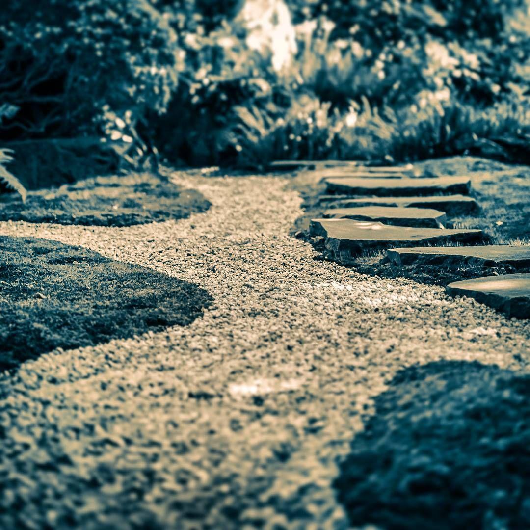 The quiet path... 🎌 #hokokuji #temple #kamakura #japan #path #pathway #rockgarden #zen #zengarden #bamboo #garden #steppingstones #agameoftones #illgrammers #igers #igersjp #bestjapanpics #beautiful #tokyocameraclub #team_jp #thisislife #outandabout #weekendtrip #alone #deserted #exploring #quiet #decorative