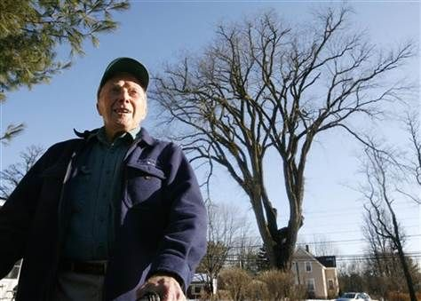 """240-Year-Old Em Tree to Get the Chop - Image: Frank Knight with """"Herbie"""" the tree.  He tried to save it!"""
