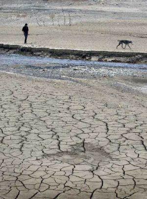 Este artículo está sobre la tierra de España que se hizo en un desierto . Cuando la tierra se convierte en un desierto las plantas mueren debido a que el suelo que se pierde minerales . También el agua desaparece y la gente no puede cultivar la tierra . Sin comida y agua a los animales mueren .