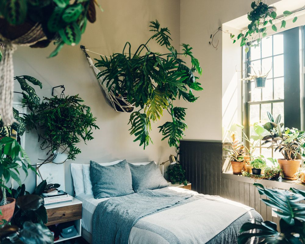 Tour Hilton Carter S Plant Filled Loft Bedroom
