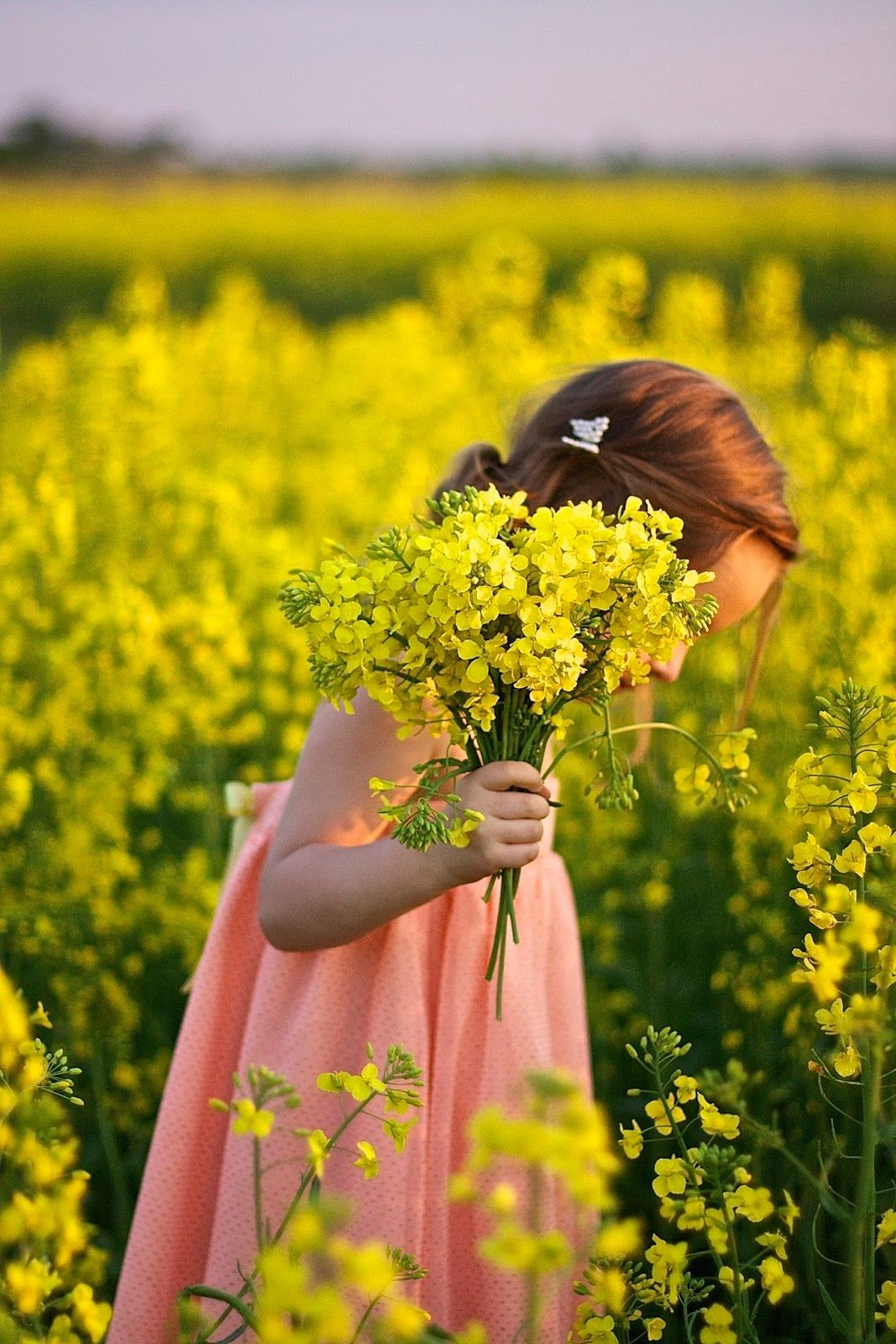 Country Living Child In Fields Of Flowers Country Kids