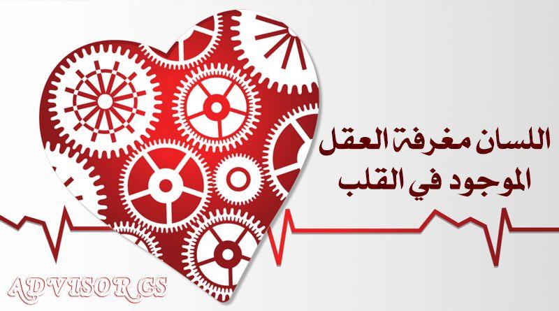 اللسان مغرفة العقل الموجود في القلب Advisor Cs