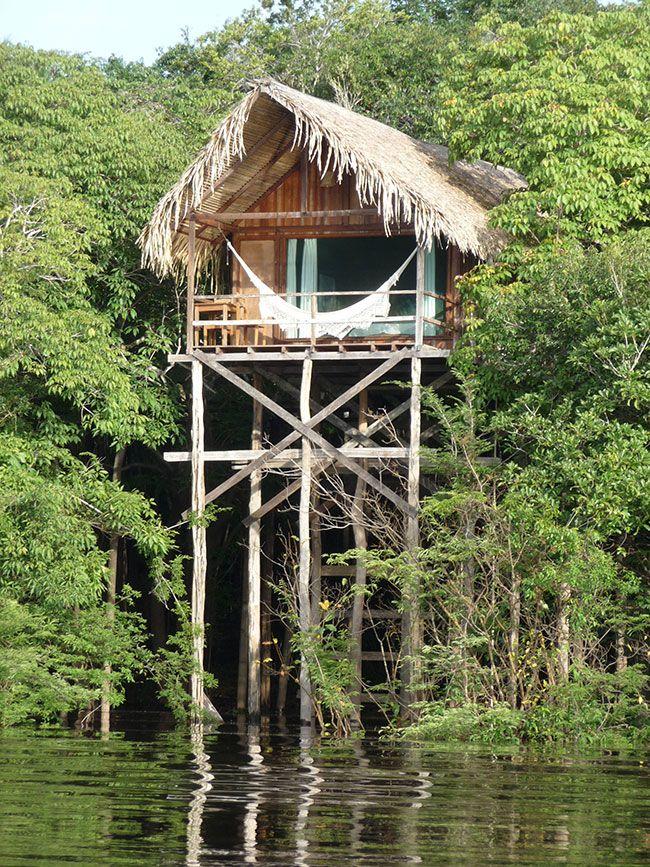 Top 10 Amazon Jungle Lodges Around Manaus Brazil Jungle House