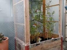 Serres Cabanes De Jardin Petites Annonces Gratuites Occasion Acheter Vendre Sur Anibis Ch