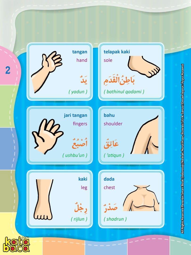 Baca Online Kamus Pintar Bergambar 3 Bahasa Indonesia Inggris Arab Kata Baca Buku Bahasa Sekolah Lucu