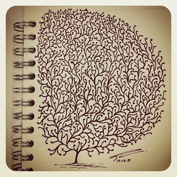 My sketching .. .