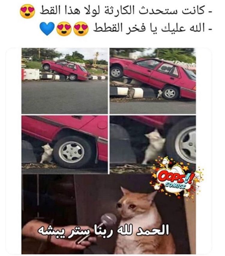 Pin By نــو هـ On ضحك Funny Funny Photo Memes Anime Funny Funny Picture Jokes