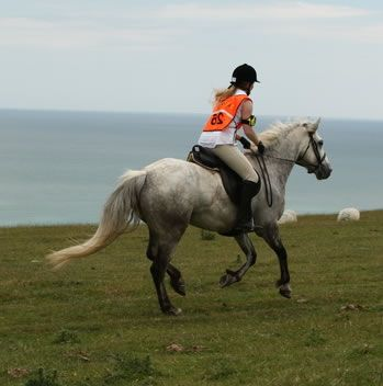 Endurance Riding - This would be so much fun.