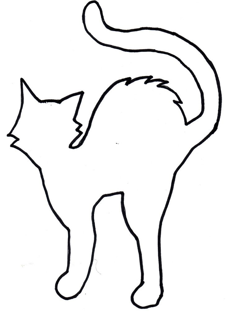 shelterpop cat template template for black paper cat cuto flickr