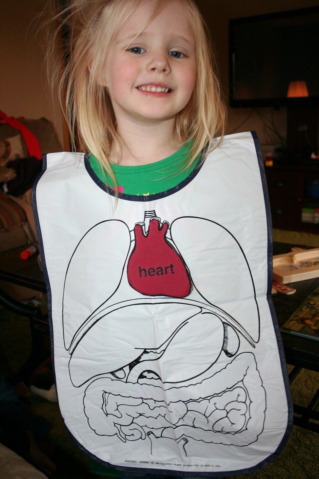 Anatomy Game, Printable Human Body Preschool Activity