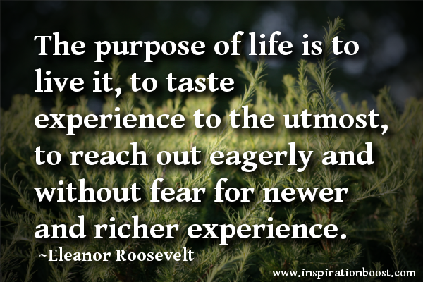 Live Your Life On Purpose The Purpose Of Life Is To Live It To Cool Quotes Purpose Of Life